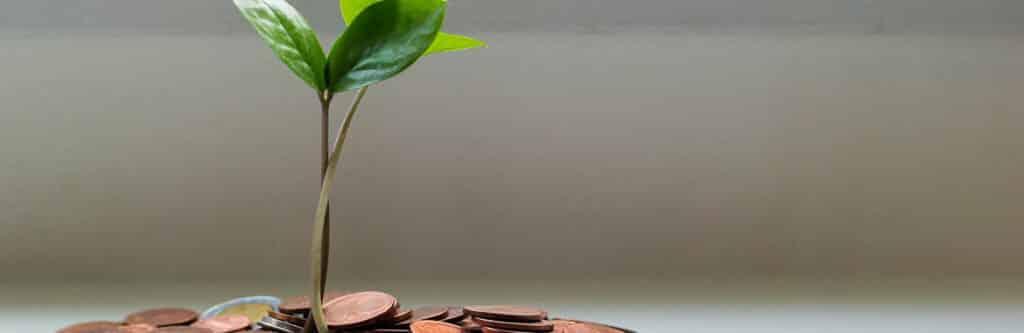 Privatinsolvenz Selbstbehalt: Was darf ich behalten?
